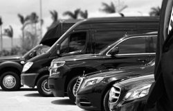 Daisy-Limousine-Car-Service-in-NJ